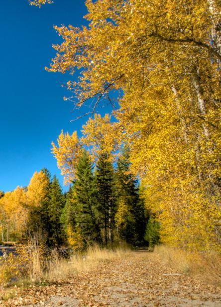 Landschaften_Canada17
