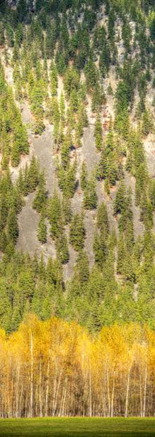 Landschaften_Canada18