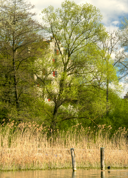 Landschaften_Greifensee7