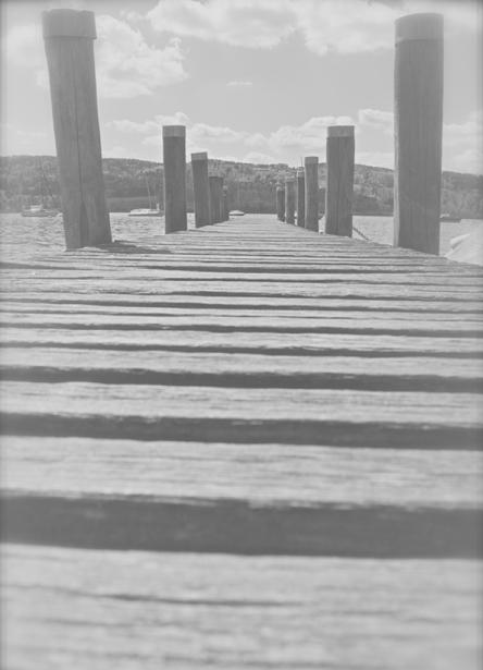 Landschaften_Greifensee9