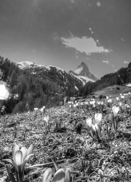 Landschaften_Zermatt11