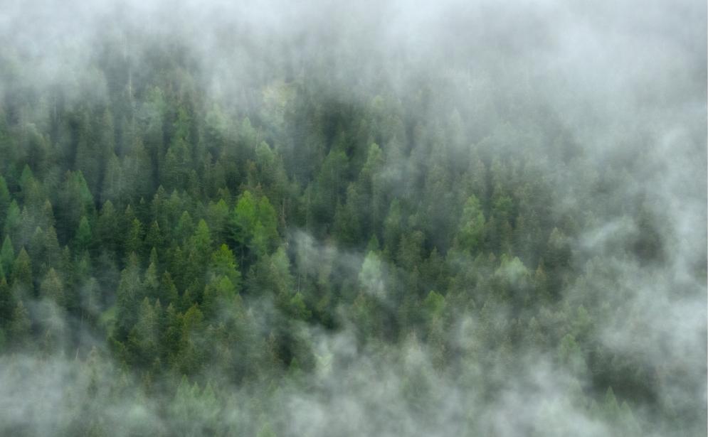 Landschaften_Binntal10