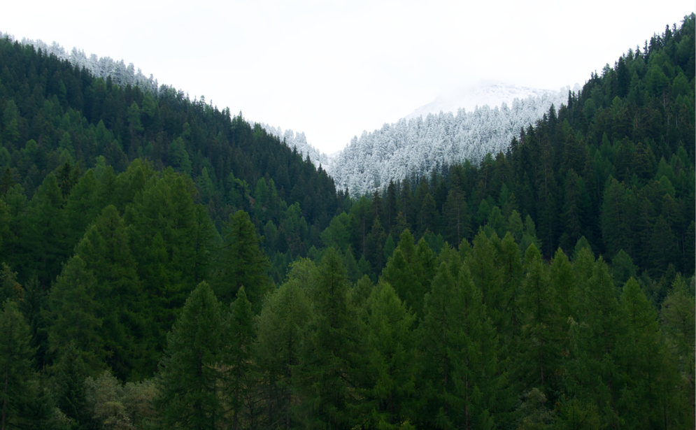 Landschaften_Binntal9